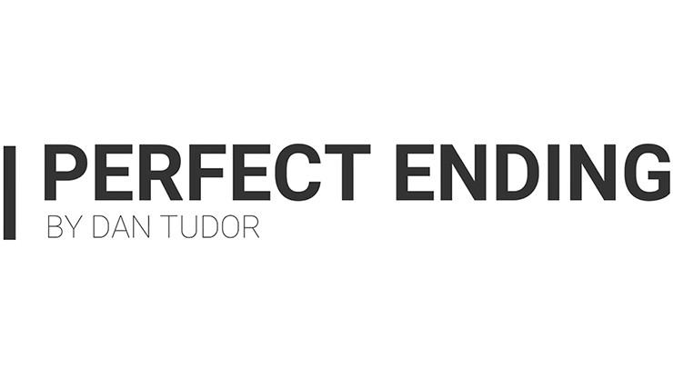 Perfect Ending by Dan Tudor